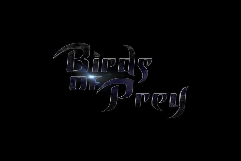 birds_of_prey___logo_by_mrsteiners-d9hs2hk